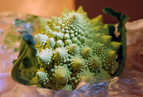 Romanesco Broccoli6