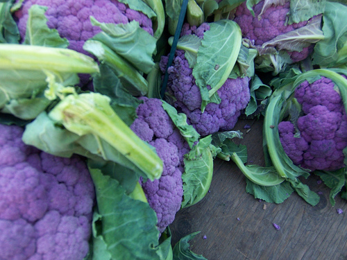 Purple Cauliflower4