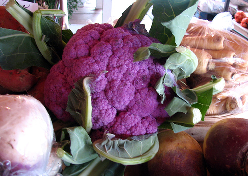 Purple Cauliflower2
